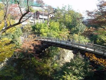 fall1[1]